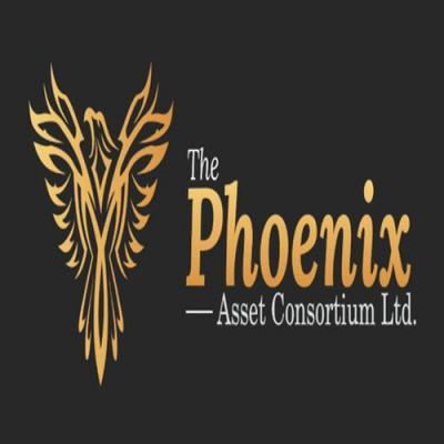 The Phoenix Asset
